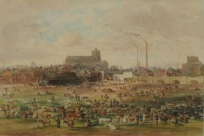 The Sands, Carlisle - the Cattle Market, 1864