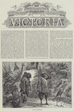 Colonial and Indian Exhibition, Victoria by William Heysham Overend