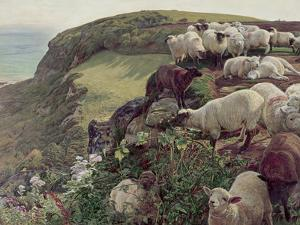 Our English Coasts by William Holman Hunt