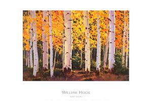 Late Light by William Hook
