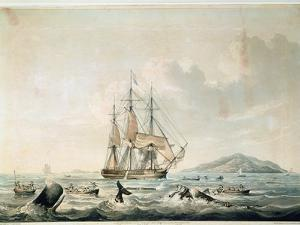 South Sea Whale Fishery, Engraved by T. Sutherland, 1825 by William John Huggins