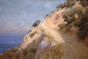 Catalina Island by William Less Judson