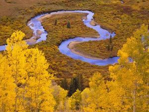 Aspen Trees Before Meandering River by William Manning