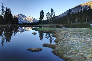 Early Morning Light Reflected on the Calm Waters of an Alpine Tarn in the Sierra Nevada Mountains W by William Manning