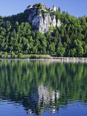 Picturesque Castle Above Lake Bled by William Manning