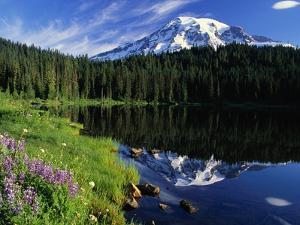 Reflection Lake and Mount Rainier by William Manning