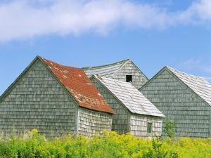 Row of Old Shingle Barns in Field by William Manning