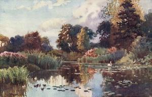 Cambridge, Botanic Gdns by William Matthison