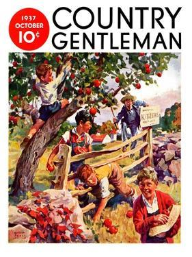 """""""Stealing Apples,"""" Country Gentleman Cover, October 1, 1937 by William Meade Prince"""
