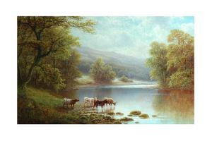 On the Wharfe, Bolton Woods by William Mellor