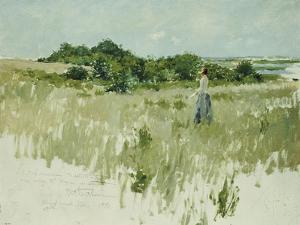 Shinnecock Hills (A View of Shinnecock), 1891 by William Merritt Chase