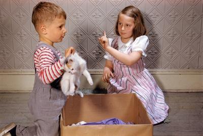 Boy Holding Kitten by William P. Gottlieb