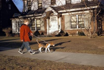 Boy Walking Dog on Sidewalk by William P. Gottlieb