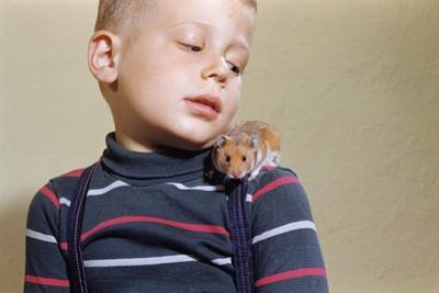 Hamster on Boy's Shoulder by William P. Gottlieb
