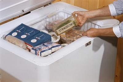 Woman Removing Food from Freezer by William P. Gottlieb