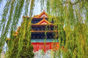 Arrow Tower, willow tree in Autumn. Forbidden City palace wall, Beijing, China. by William Perry