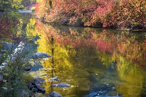 Deep Fall Colors, Wenatchee River, Stevens Pass Leavenworth, Washington State by William Perry