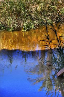 Jordan River Abstract Near Bethany, Israel by William Perry