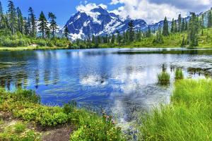 Picture Lake Evergreens Mount Shuksan Mount Baker Highway Snow Mountain Trees Washington Pacific No by William Perry