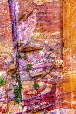 Red Rock Abstract, Petra, Jordan by William Perry