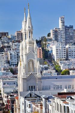 Saint Peter and Paul Catholic Church Steeples Houses San Francisco, California by William Perry