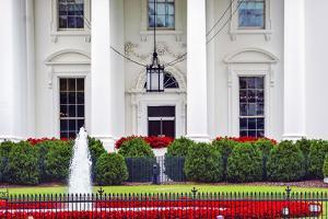 White House, Pennsylvania Ave, Washington DC. by William Perry