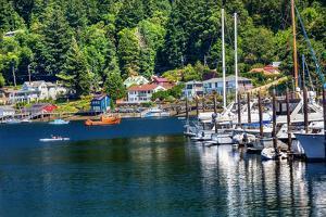 White Sailboats Marina Kayak Reflection, Gig Harbor, Pierce County, Washington State by William Perry