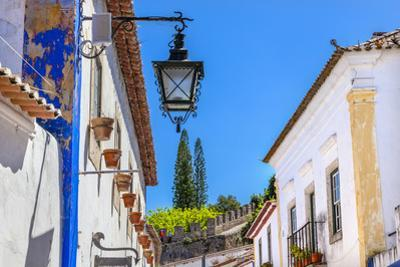 White Street in a Medieval Town, Obidos, Portugal by William Perry