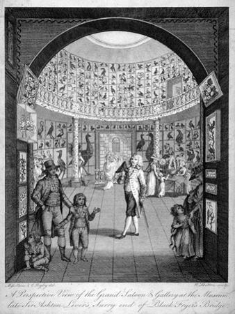 Interior View of the Leverian Museum, Albion Place, Southwark, London, C1795
