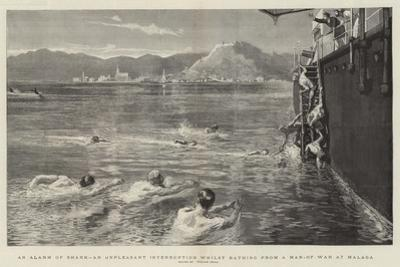 An Alarm of Shark, an Unpleasant Interruption Whilst Bathing from a Man-Of-War at Malaga by William Small