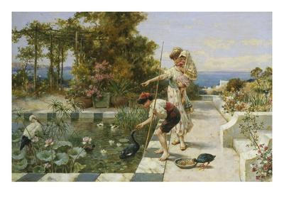 Feeding the Ibis at Corsica