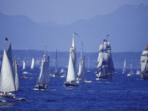 2002 Tall Ships Festival in Elliott Bay, Seattle, Washington, USA by William Sutton