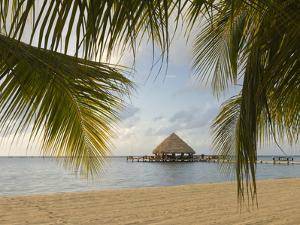 A Palapa and Sandy Beach, Placencia, Belize by William Sutton