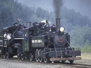 Antique Steam Locomotive, Elbe, Washington, USA by William Sutton