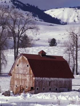 Barn in Winter, Methow Valley, Washington, USA by William Sutton