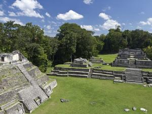 Caracol Ancient Mayan Site, Belize by William Sutton