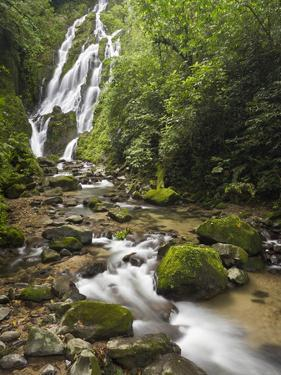 Chorro El Macho Falls, Anton El Valle, Panama by William Sutton