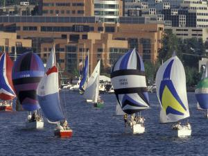 Duck Dodge Sailboat Race, Lake Union, Seattle, Washington, USA by William Sutton