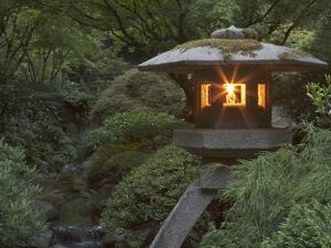 Illuminated Lantern in Portland Japanese Garden, Oregon, USA by William Sutton