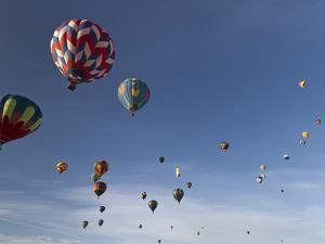 Mass Ascension at the Albuquerque Hot Air Balloon Fiesta, New Mexico, USA by William Sutton