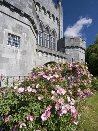 Medieval Castle, County Kilkenny, Ireland by William Sutton
