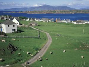 Pastoral Scene, Isle of Iona, Scotland by William Sutton