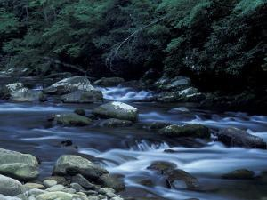 The Little River, Great Smoky Mountains National Park, Tennessee, USA by William Sutton