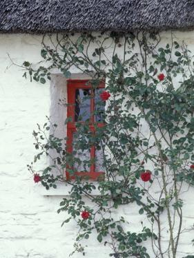 Traditional Cottage, County Mayo, Ireland by William Sutton