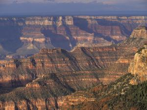 View from Bright Angel Point, Grand Canyon National Park, Arizona by William Sutton