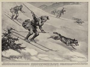 Sport in Lapland, a Wolf-Hunt on Ski by William T. Maud