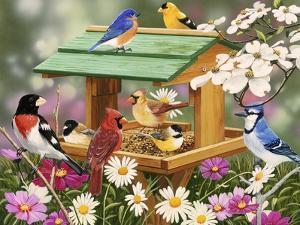 Backyard Birds Spring Feast by William Vanderdasson