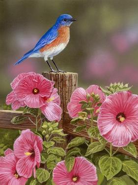 Bluebird with Hibiscus by William Vanderdasson