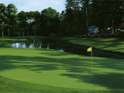 Golf Course 3 by William Vanderdasson
