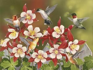 Hummingbird Feeding Frenzy by William Vanderdasson